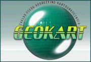 geokart logo